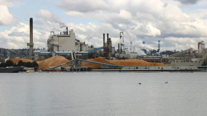 Pulp mill prepares for expansion on Tideflats