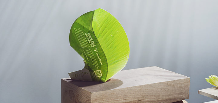Industrial and home compostability certifications for Metsä Board's eco-barrier paperboard